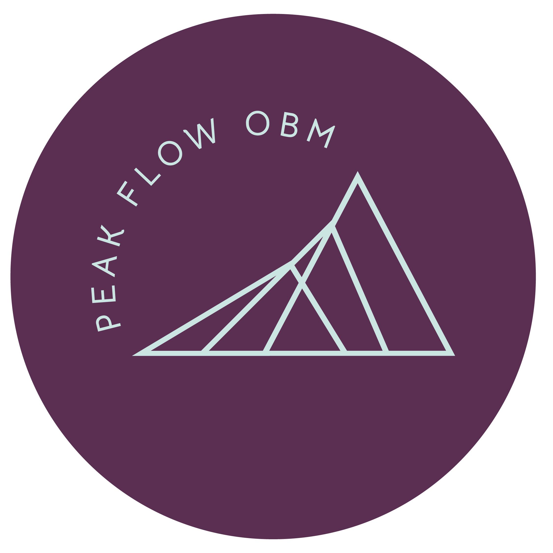 Peak Flow Online Business Management