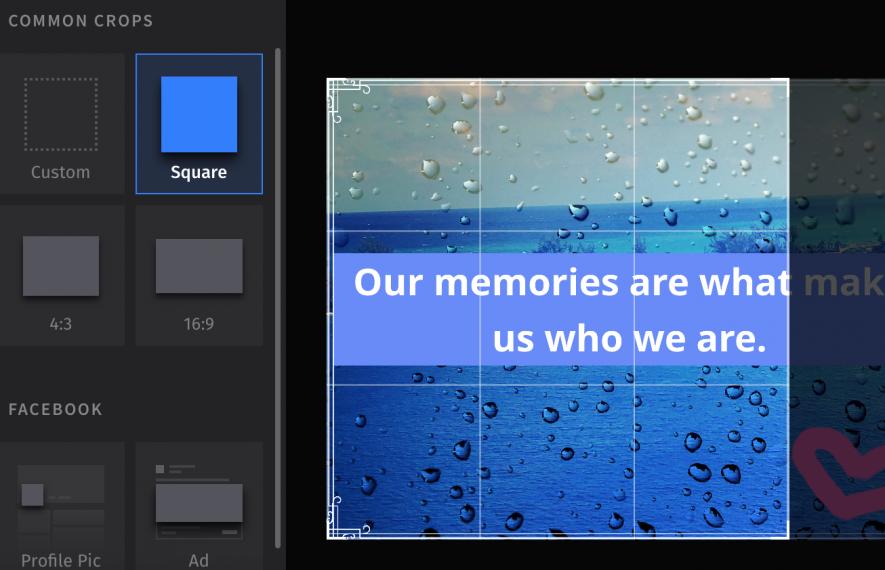 Opzioni di ridimensionamento sull'editor online per immagini