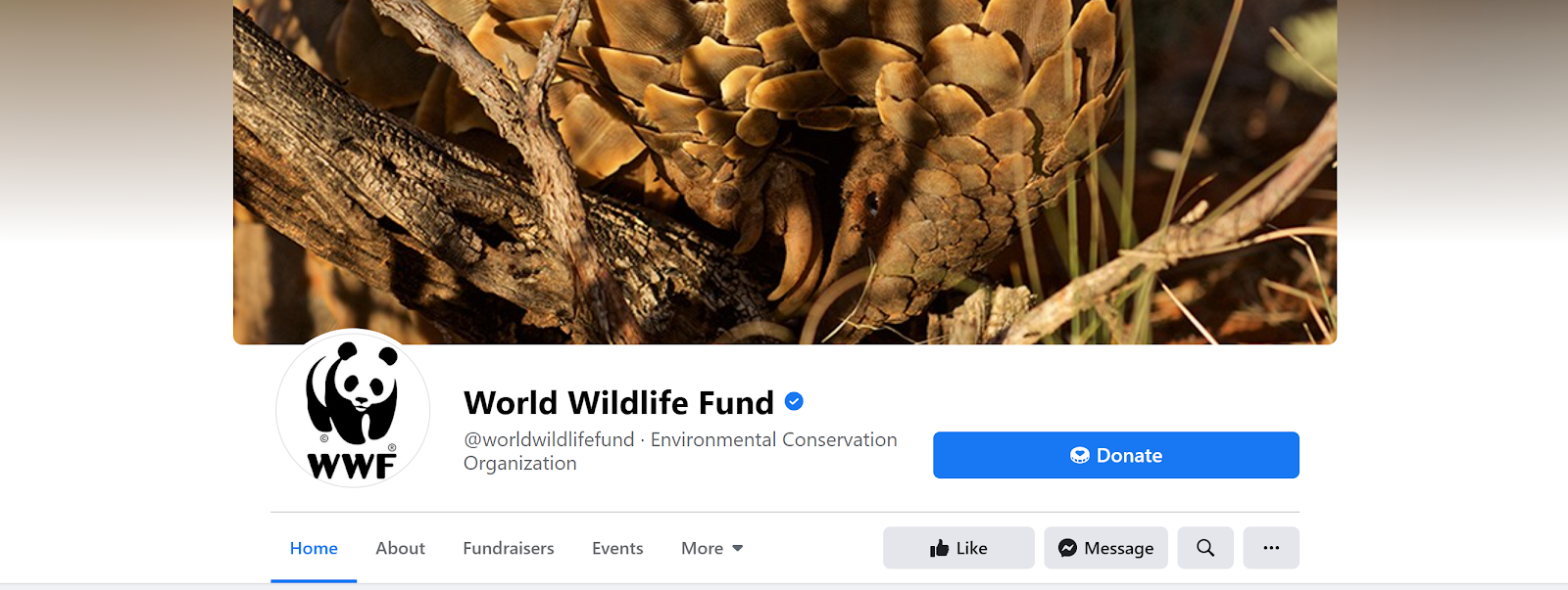 World Wildlife Fund Facebook page screenshot