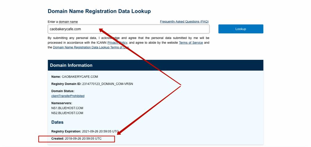 domain age tool