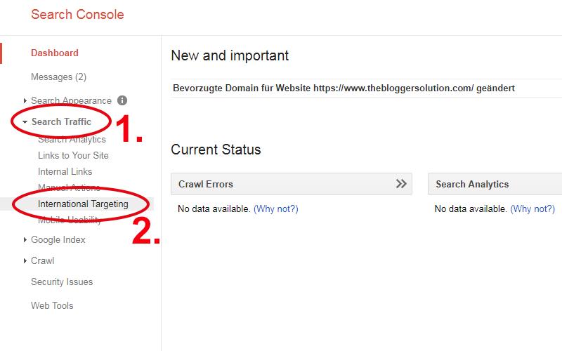 Screenshot: Google Search Console International Targeting