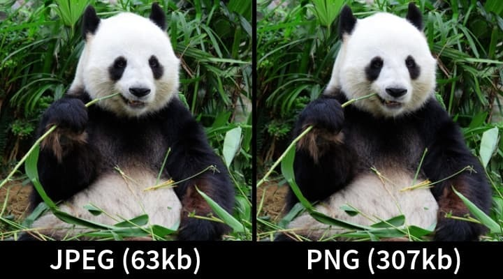 Showing JPEG vs PNG - image optimization best practices