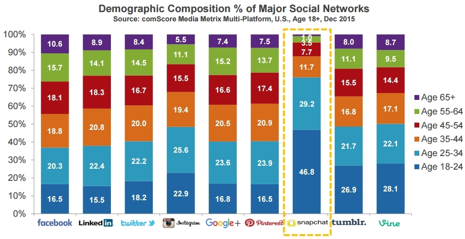 Demographic composition of major social networks