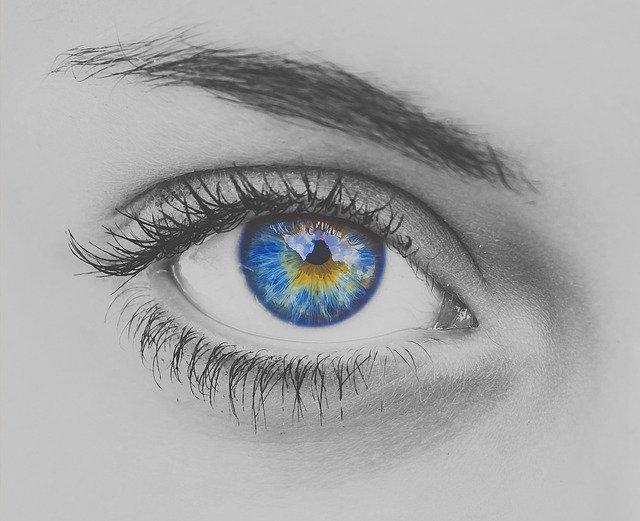 Œil bleu fixant