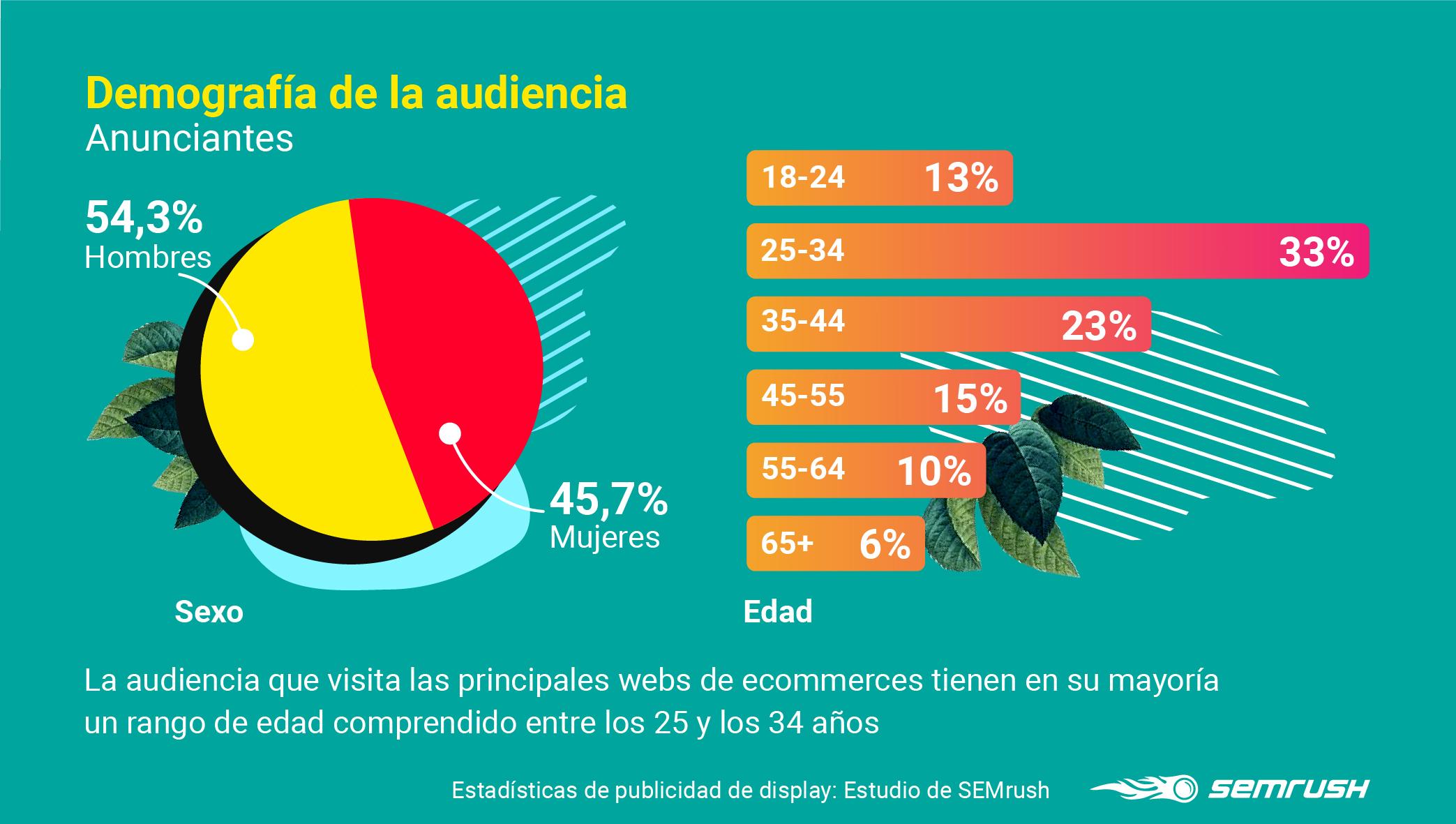 Display advertising - Anunciantes demografía