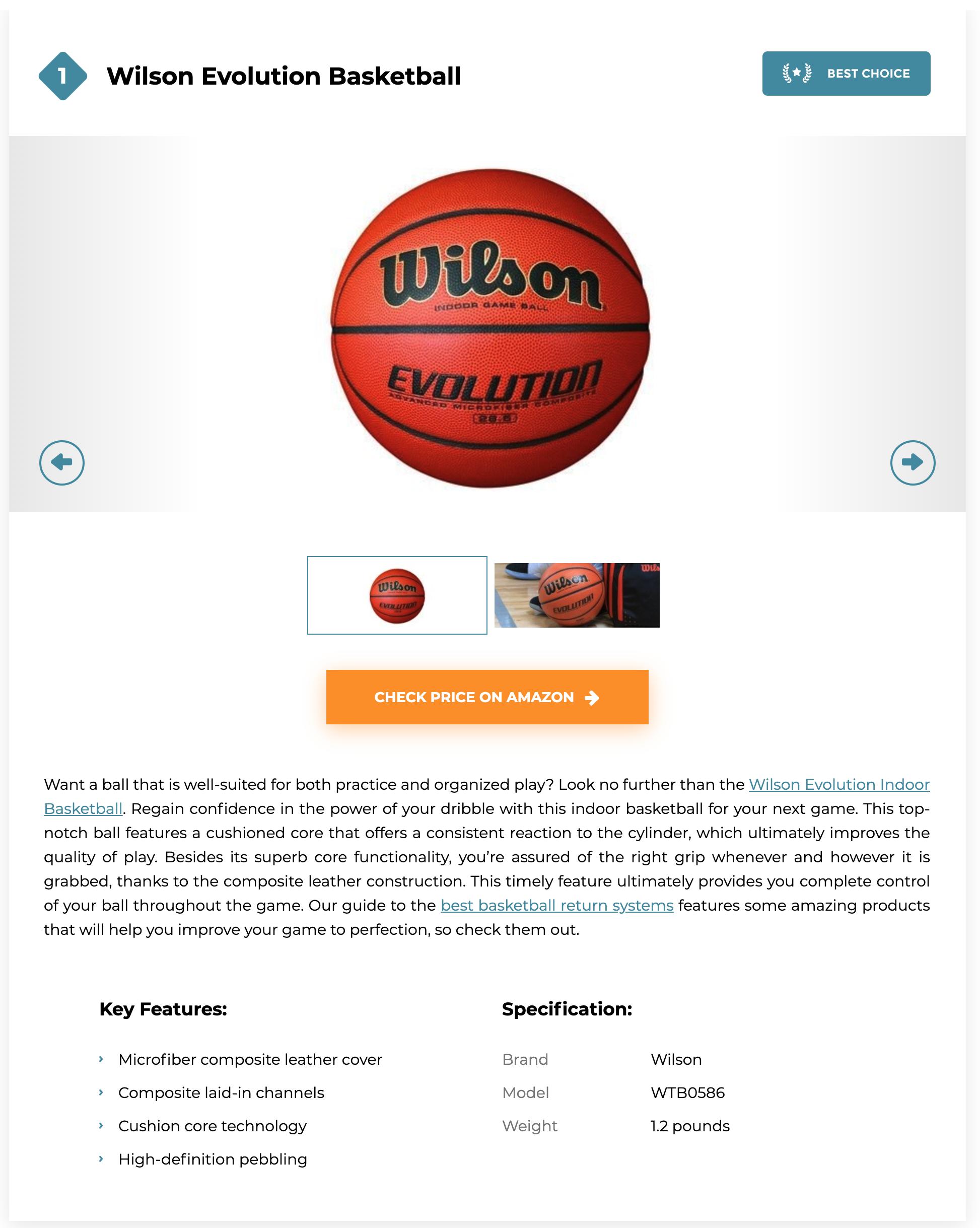 Wilson Evolution basketball review screenshot