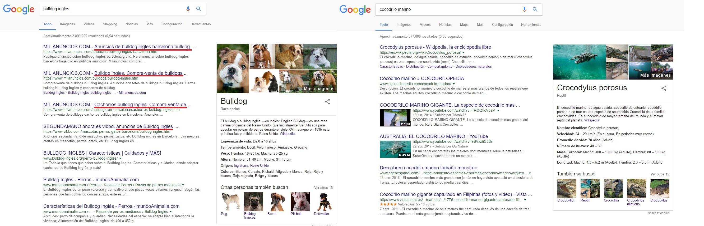 Intención de búsqueda en keywords similares