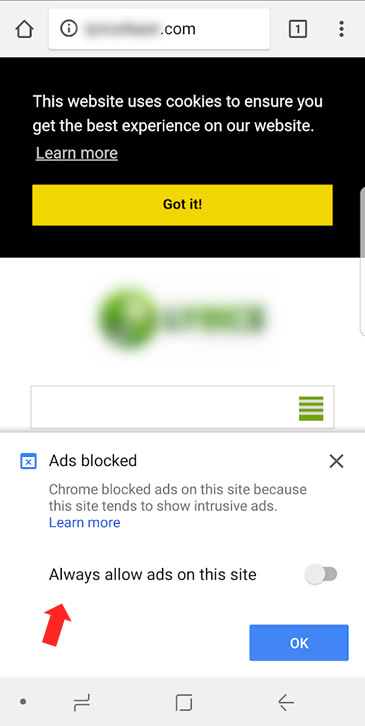 Page experience Ads blocked example