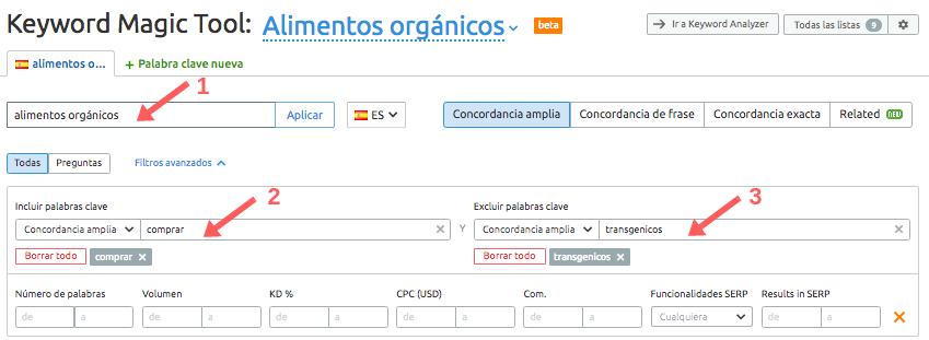 Cómo hacer PPC en PYMEs: con Keyword Magic Tool