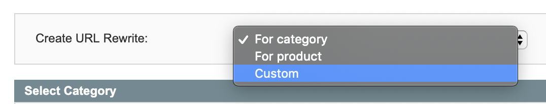 Custom Magento rewrite option