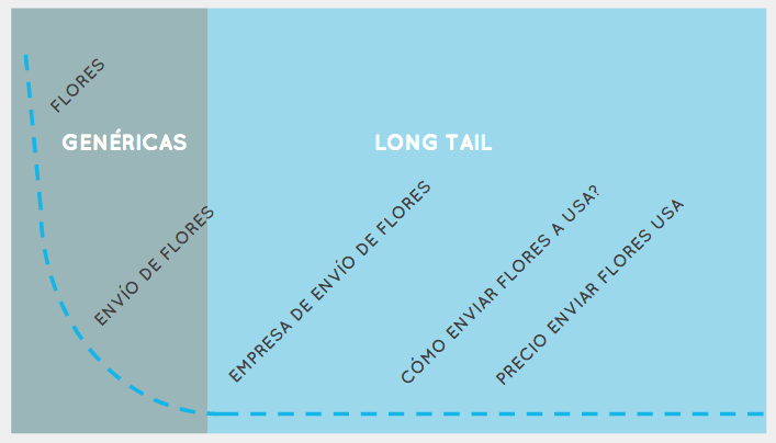 tipos-de-palabras-long-tail