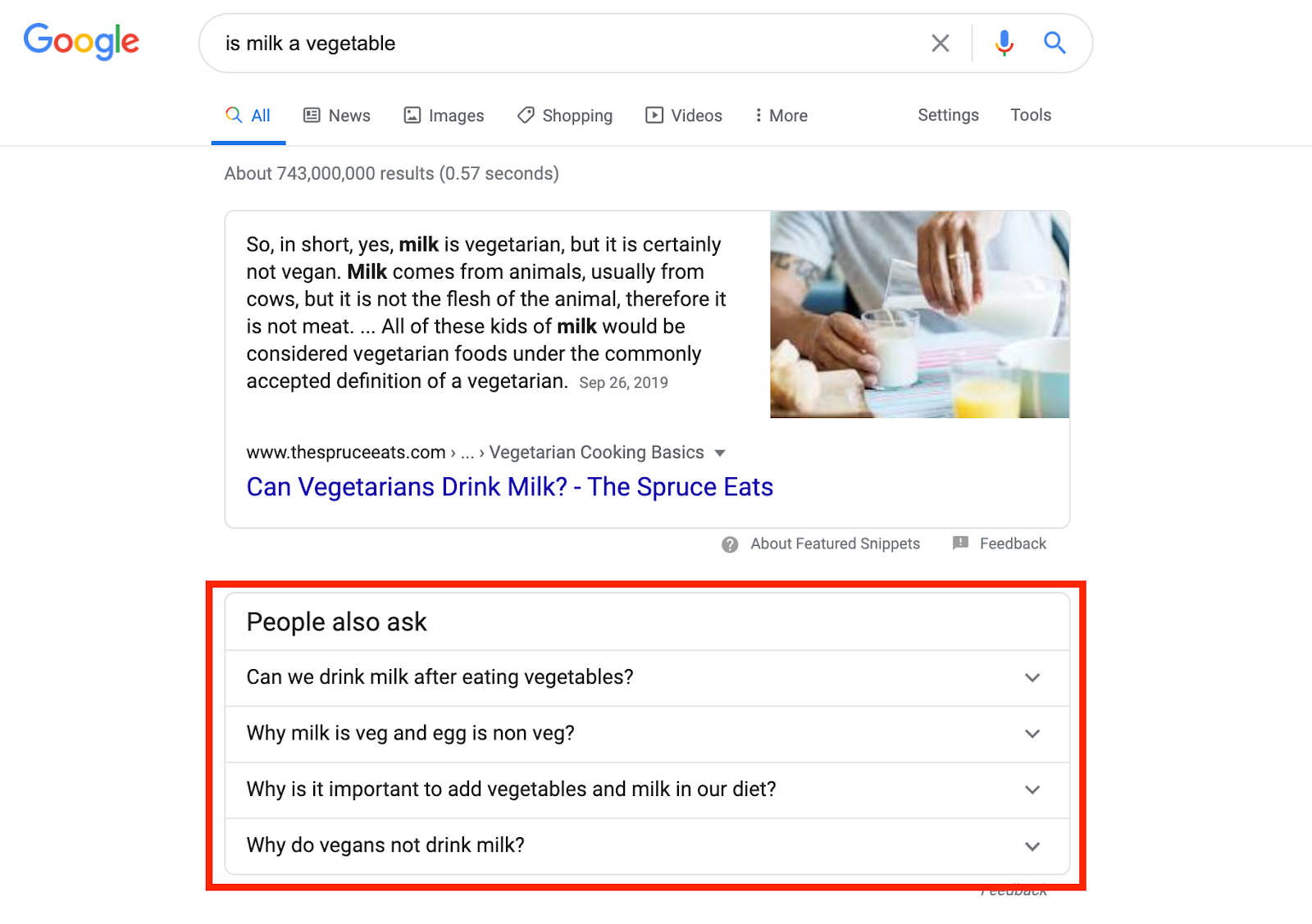 People also ask SERP feature