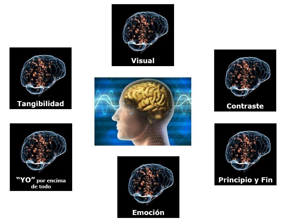 Cómo hacer neuromarketing - 6 estímulos Cerebro reptil