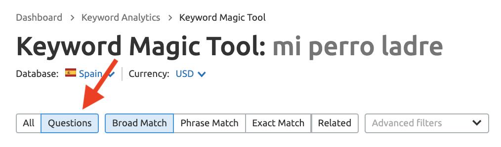 Buscar palabras clave con SEMrush Keyword Magic tool - Preguntas