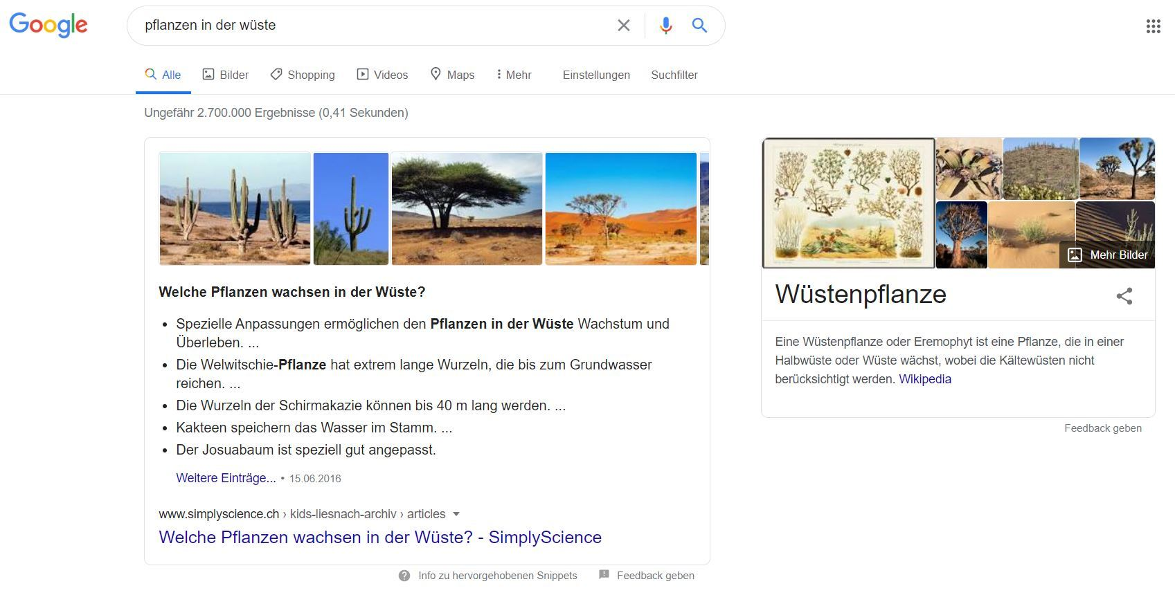 Screenshot: SERP mit Keyword