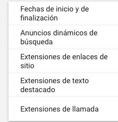 Anuncios dinámicos de búsqueda - Extensiones y Categorías