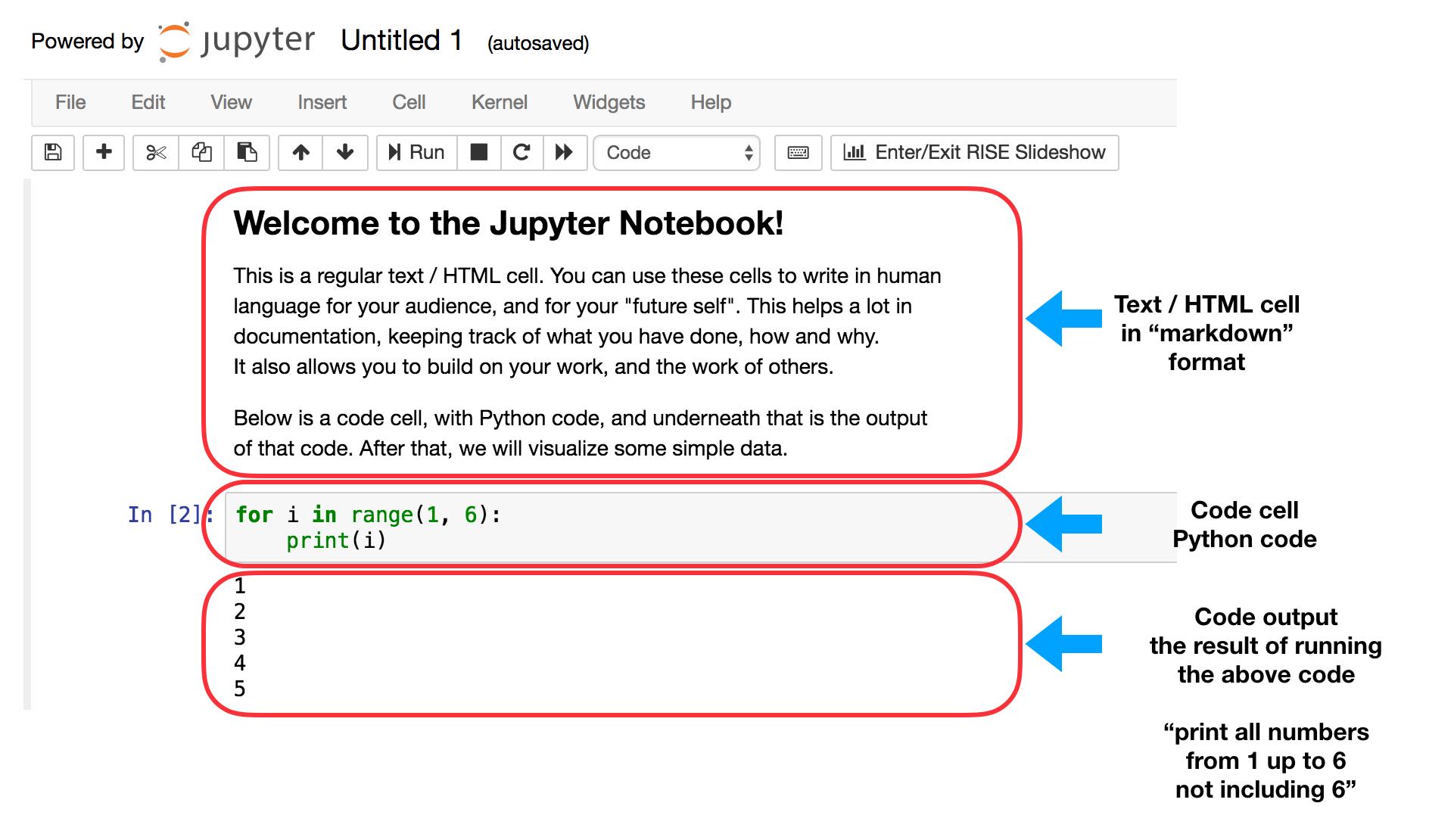 Code- und Markdown-Zellen in Jupyter Notebook