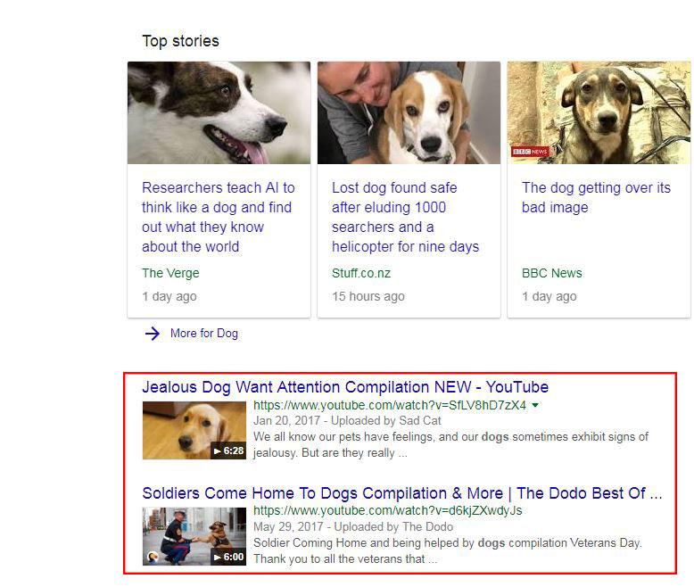Videos at the top of the search results page