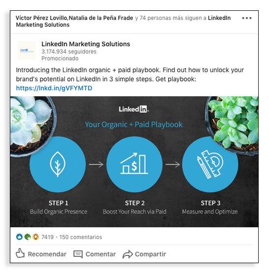 Usuarios de redes sociales - Contenido en LinkedIn