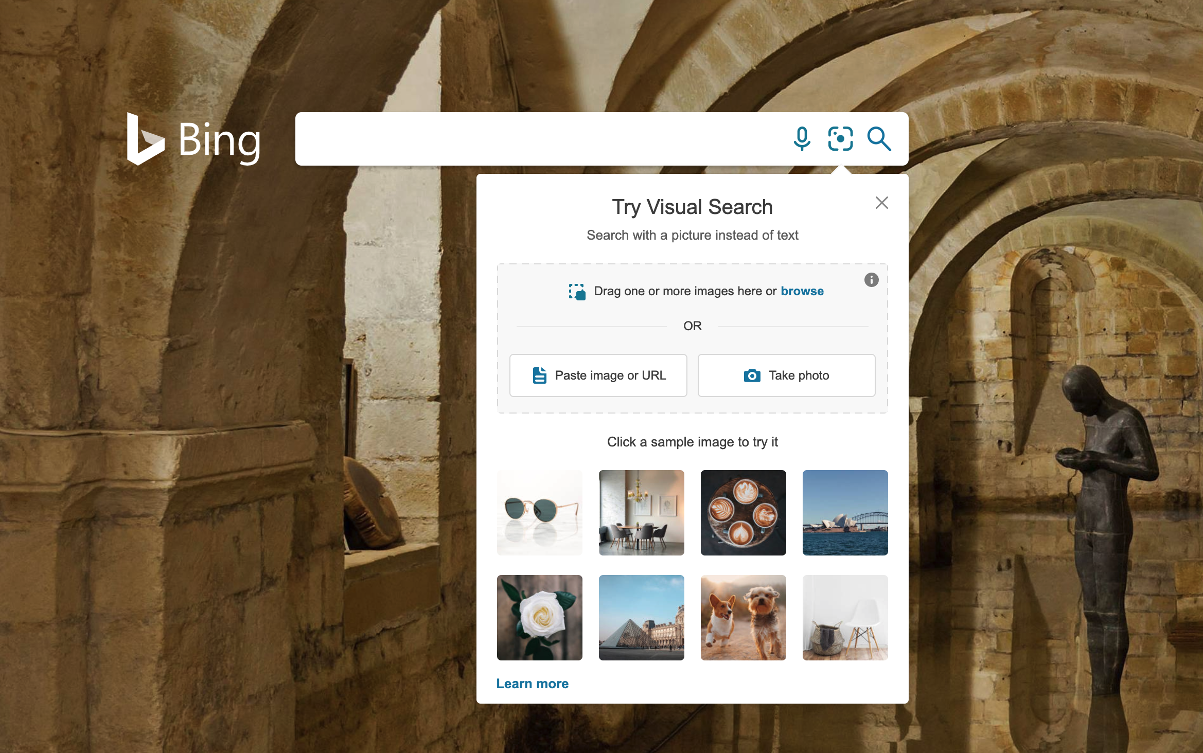 Bing visual search options screenshot