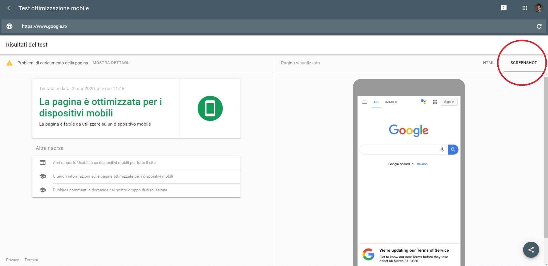 Test mobile di google (screenshot)