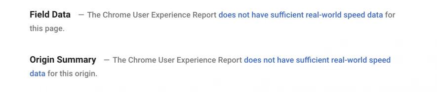 Google PageSpeed Insights: Keine Daten