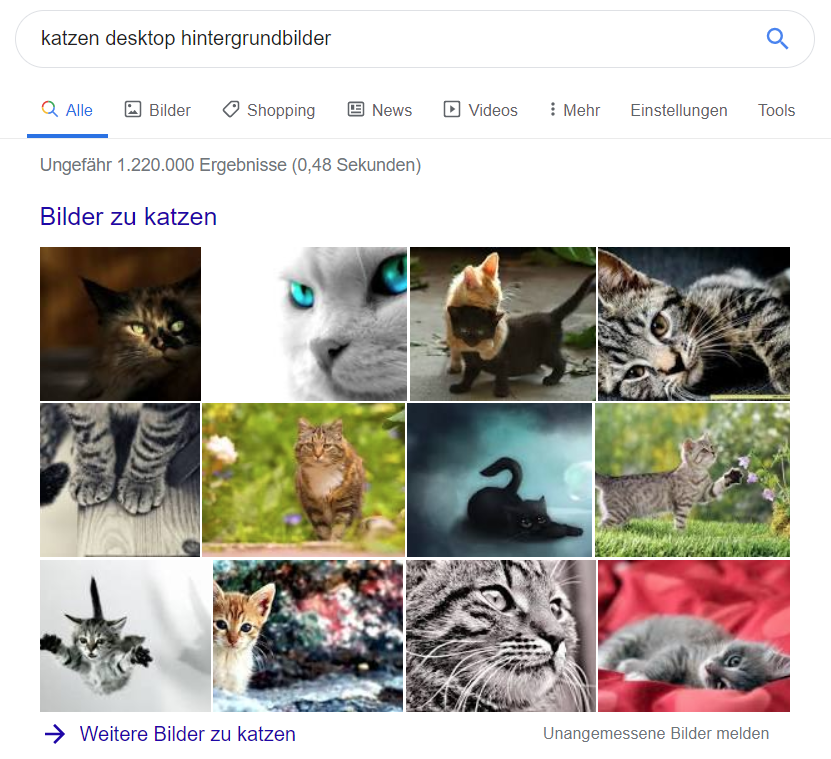 Das NLP-API-Tool von Google: Die nächste Stufe der Content-Optimierung. Bild 10