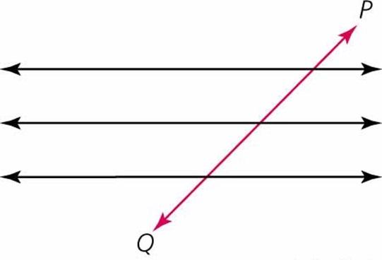 ¿Qué es la transversalidad?