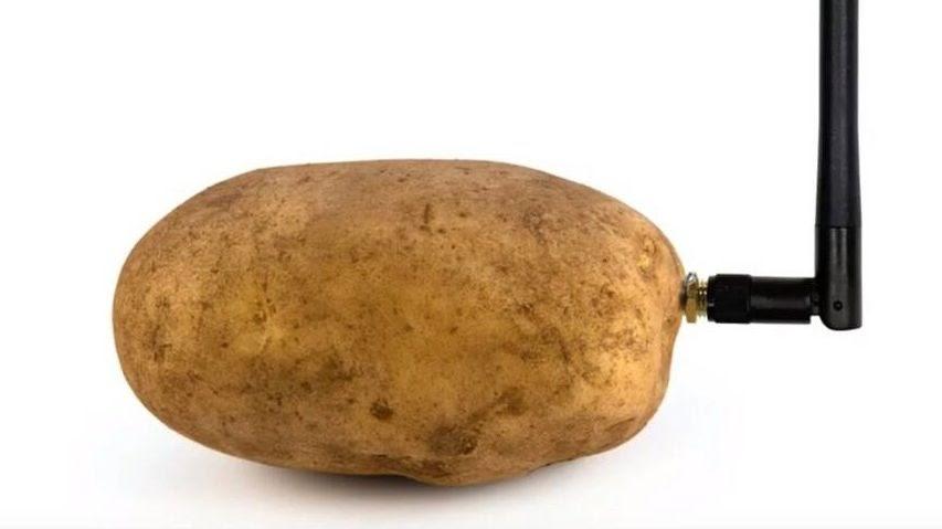 SEMrush tendances et nouveautés du digital - patate CES 2020