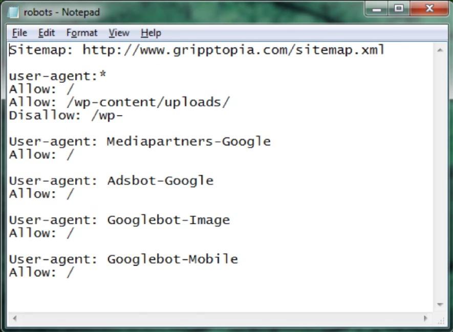 robots txt-notepad