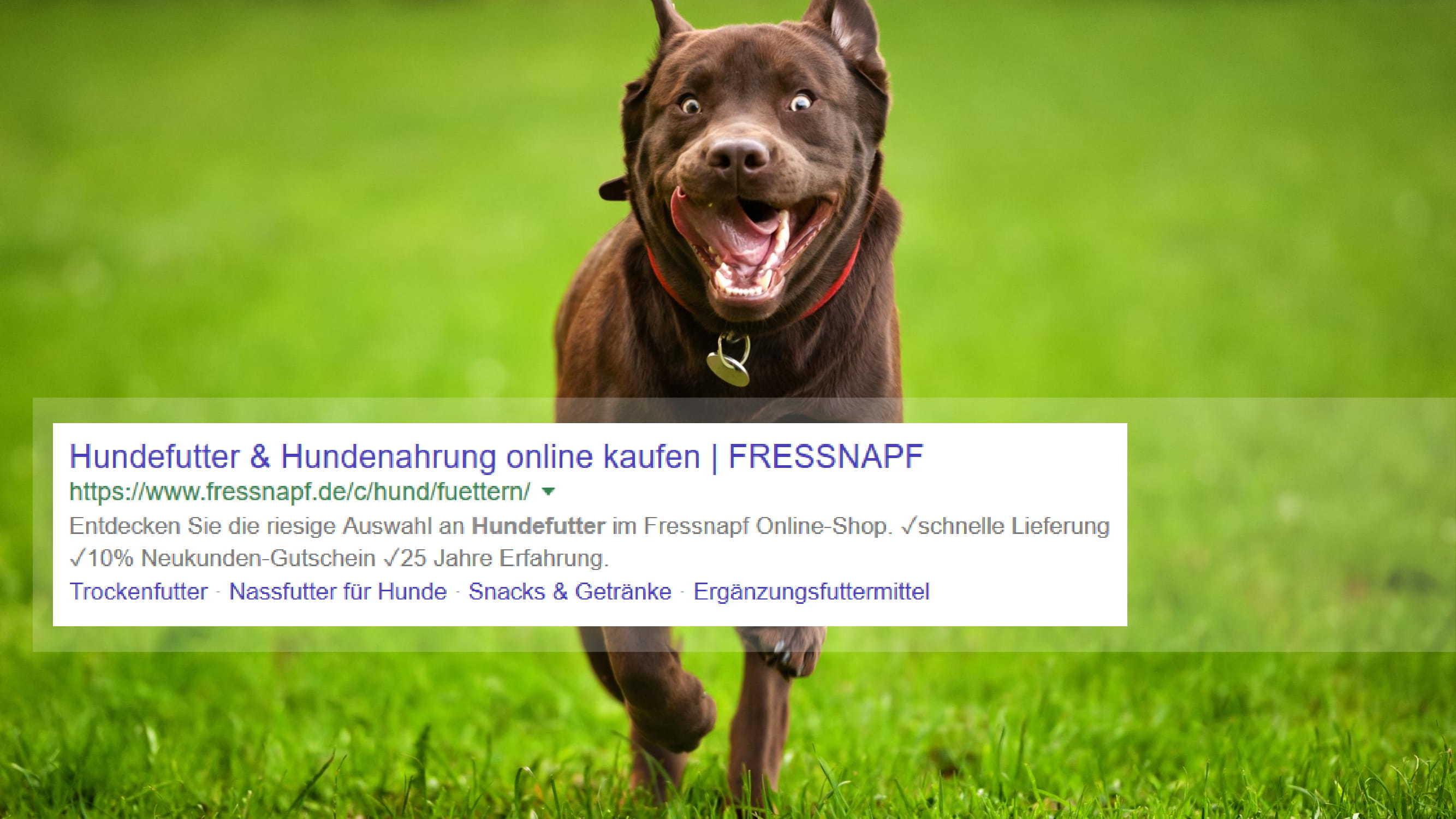 7-wirkungsvolle-online-marketing-hebel-fur-online-shops-20.jpg