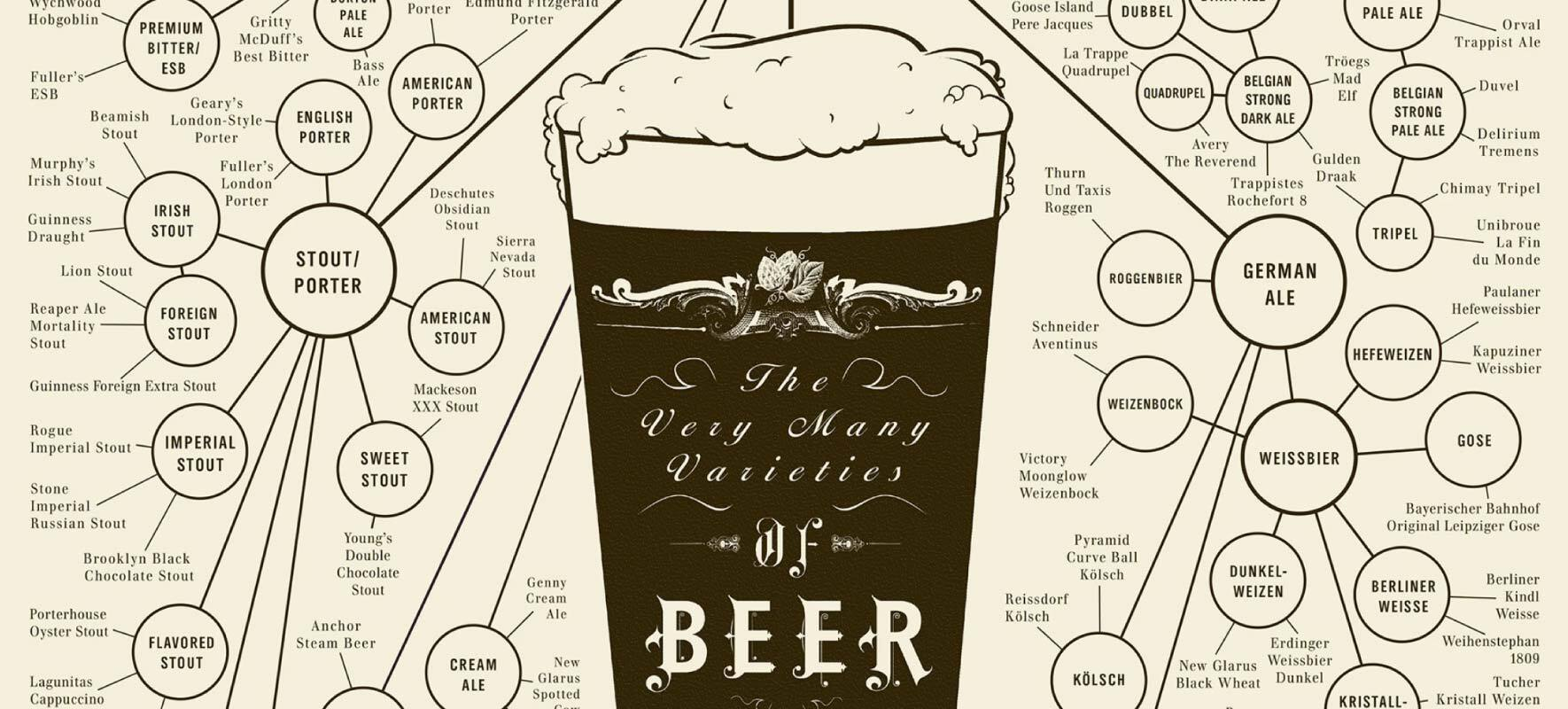 Infographic Examples The Many Varieties of Beer