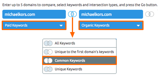 Keyword gap analysis: paid vs organic