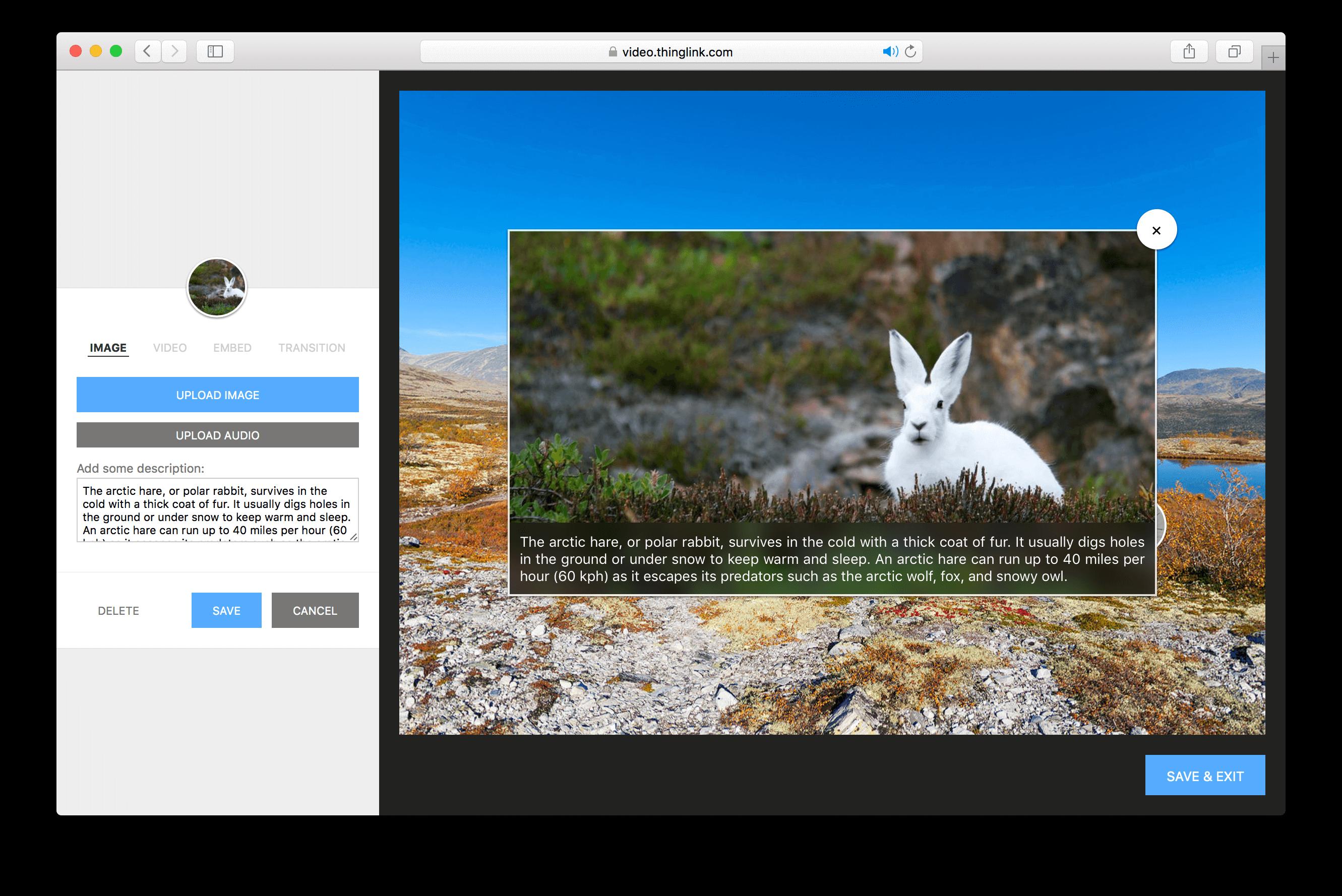 Come creare contenuti dinamici e interattivi con Thinglink