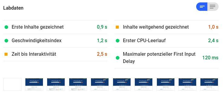 Google PageSpeed Insights: Labor-Daten