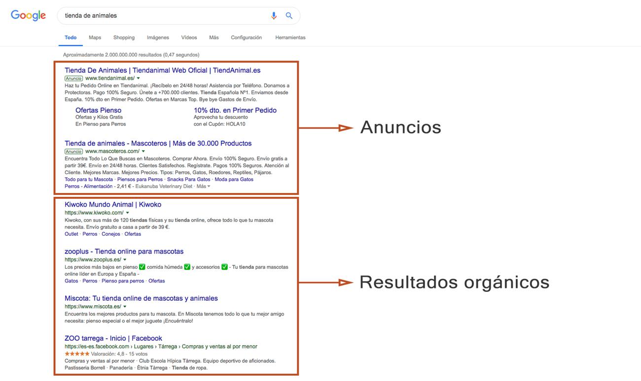 Qué es Google AdSense - Tipos de resultados