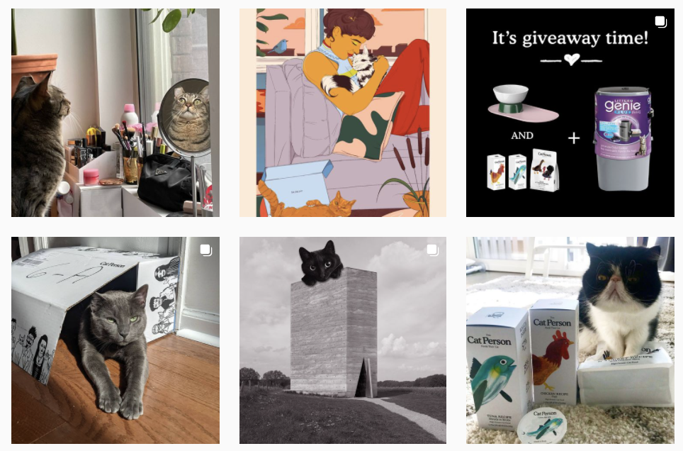 Content marketing examples - Cat Person