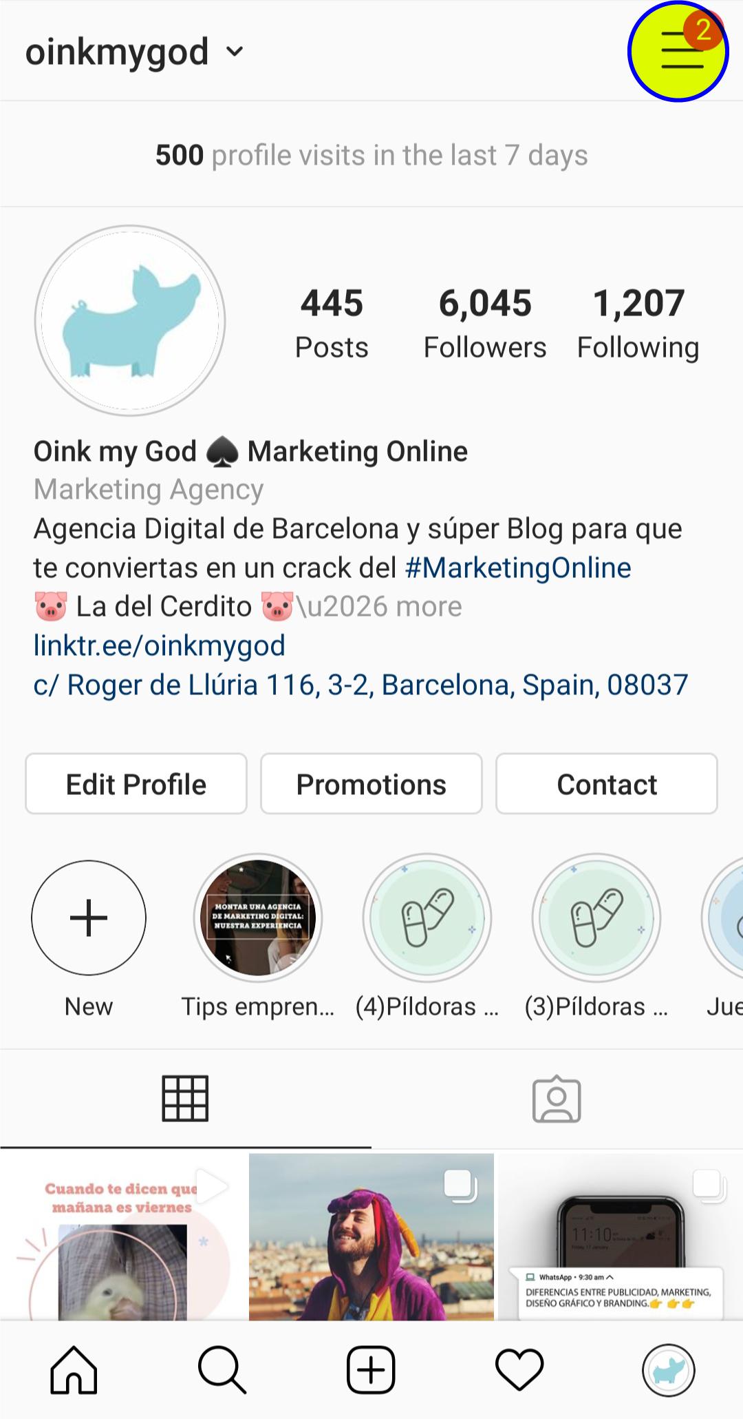 Estadísticas de Instagram - Ejemplo Oink my God