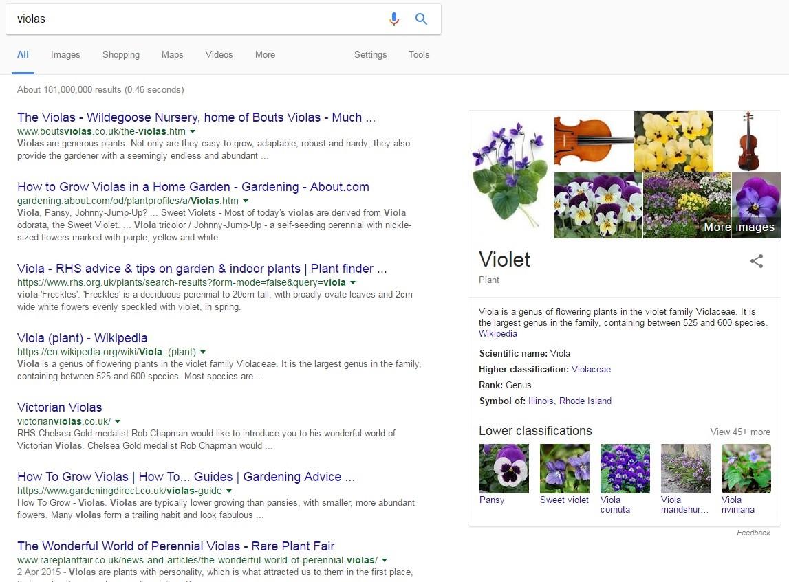 Google Result for Violas