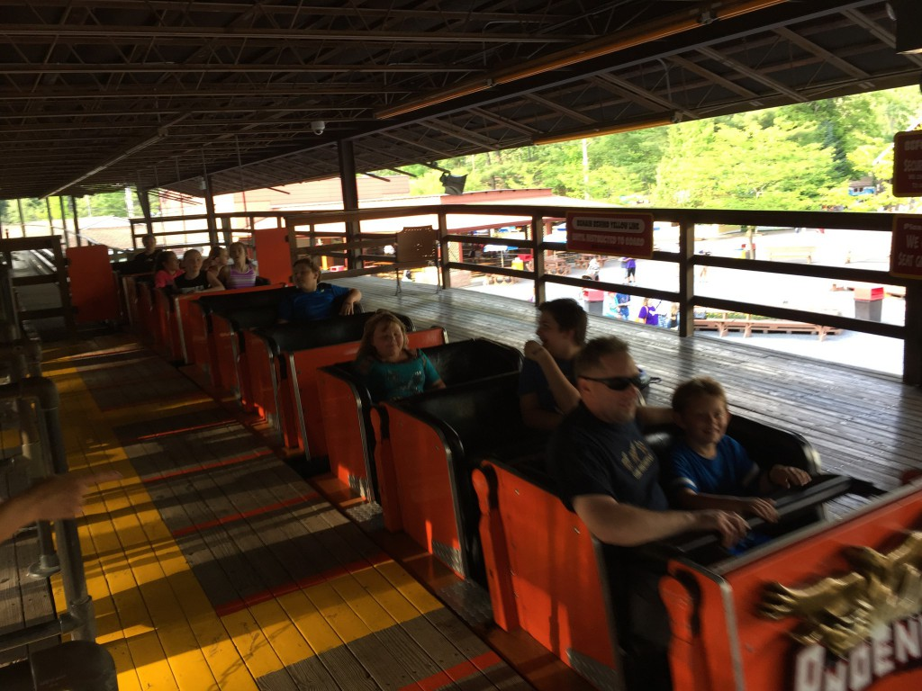 roller-coaster-1