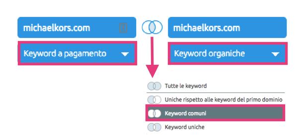 Per migliorare gli annunci PPC analizza le keyword dei competitor, organiche e a pagamento
