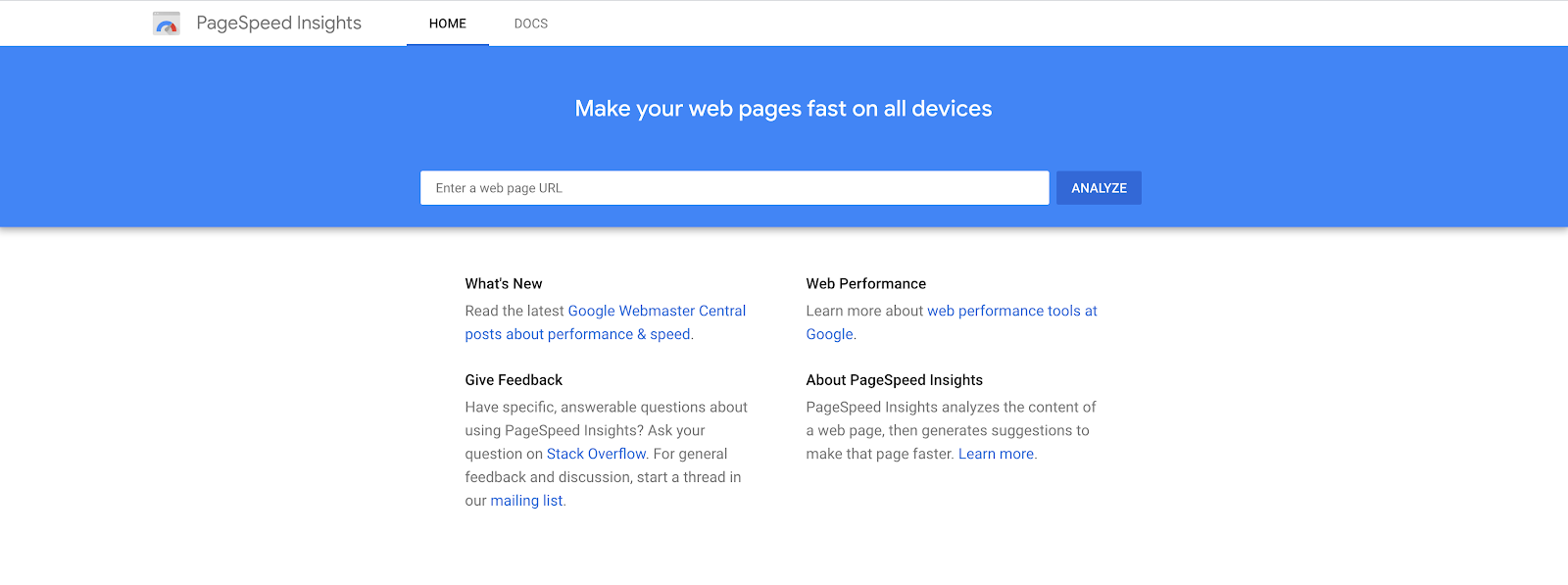 What PageSpeed Insights tool looks like