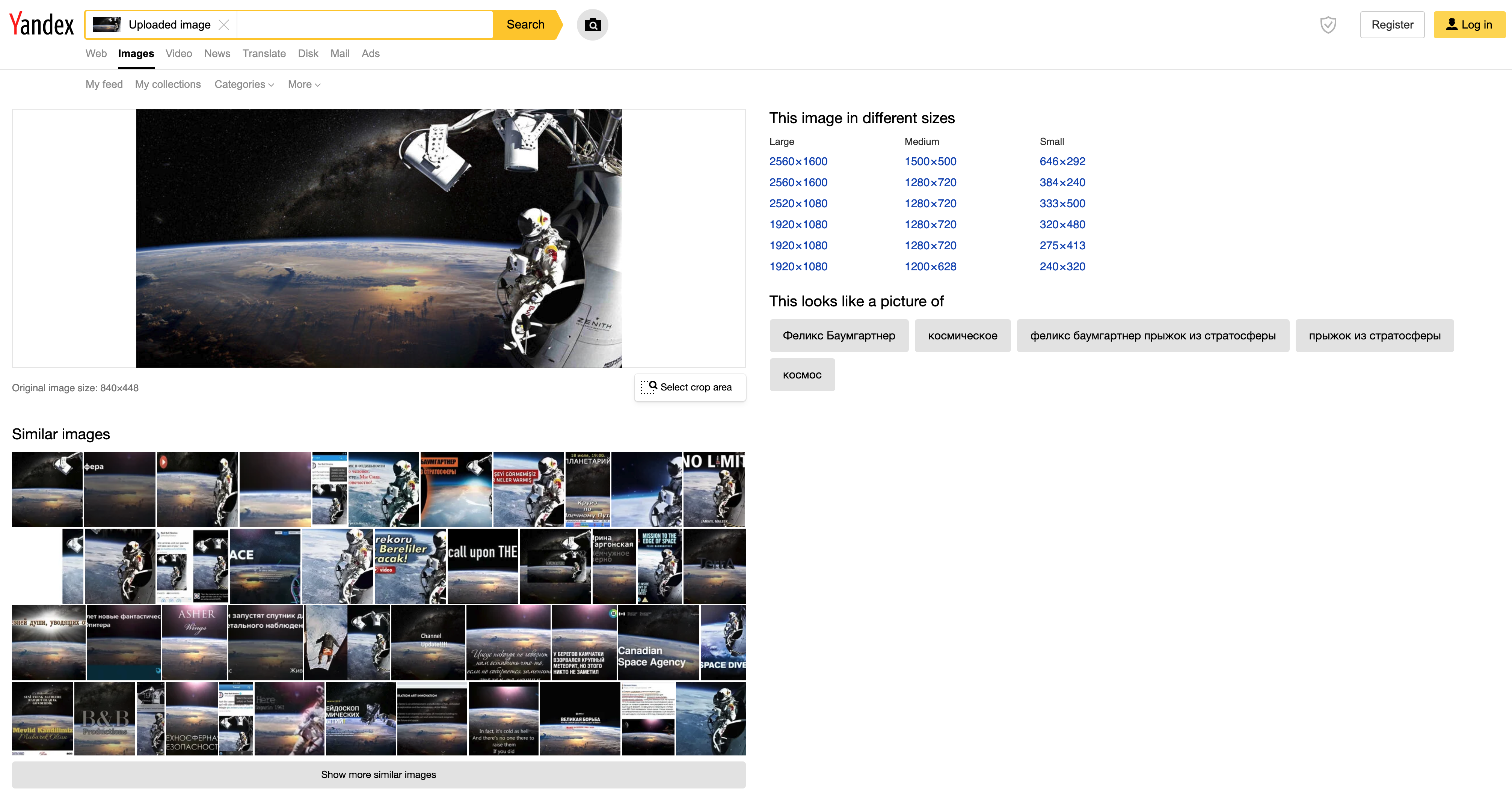 yandex reverse image results example