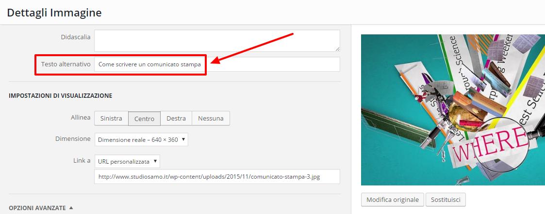 Ottimizzazione on-site per aumentare il traffico di un blog: l'alt immagini