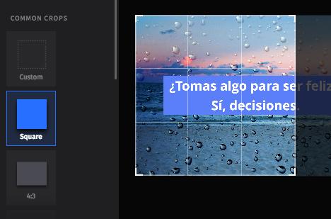 Editor de imágenes SEMrush - Tamaño ideal de imágenes