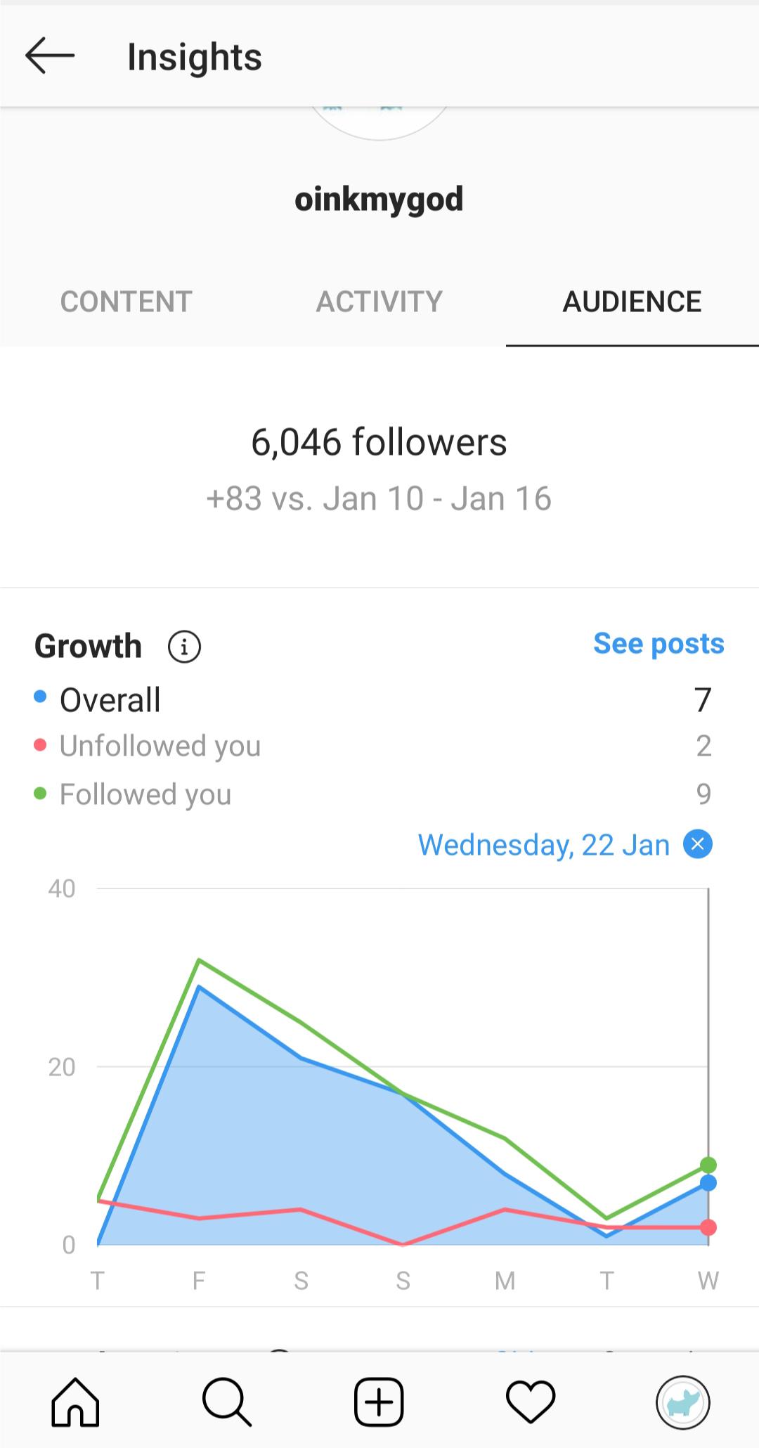 Estadísticas de Instagram - Datos de audiencia