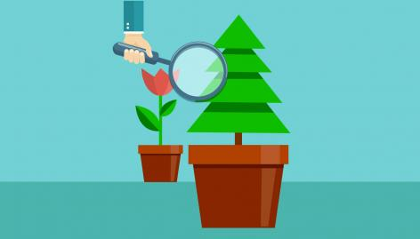Preview: Seasonal vs. Evergreen Content: The Case for Balance in SEO