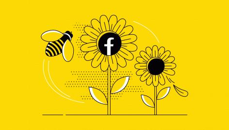 Aperçu : Comment créer le buzz sur Facebook ?
