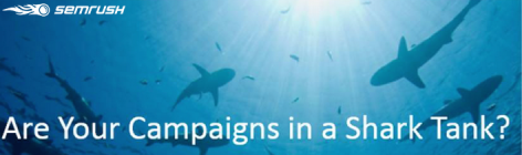 Preview: Are Your Ad Campaigns in a Shark Tank?