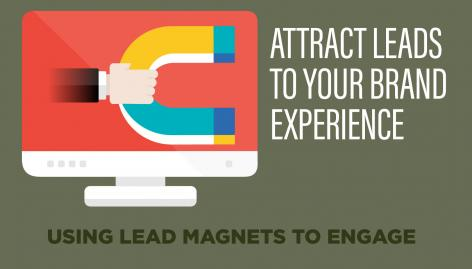 Preview: 12 Lead Magnet Ideas for Your Website